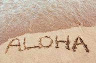 Canvas-taulu Aloha Havaiji 1050
