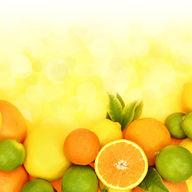 Canvas-taulu Appelsiini, lime ja sitruuna 215