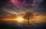 Canvas-taulu Universumin ilta 484