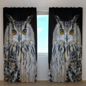 Pimennysverho Attentive Owl