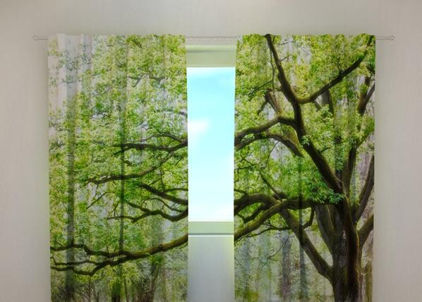 Pimennysverho GREEN TREE 240x220 cm