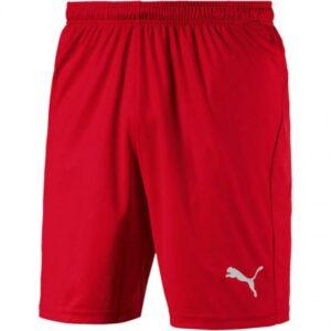 Miesten jalkapalloshortsit Shortsit Puma Liga Core M 703 436 01